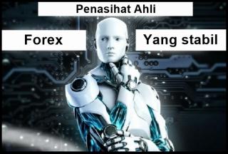 Perangkat lunak penasihat pembina ahli forex