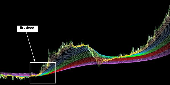 Rainbow forex
