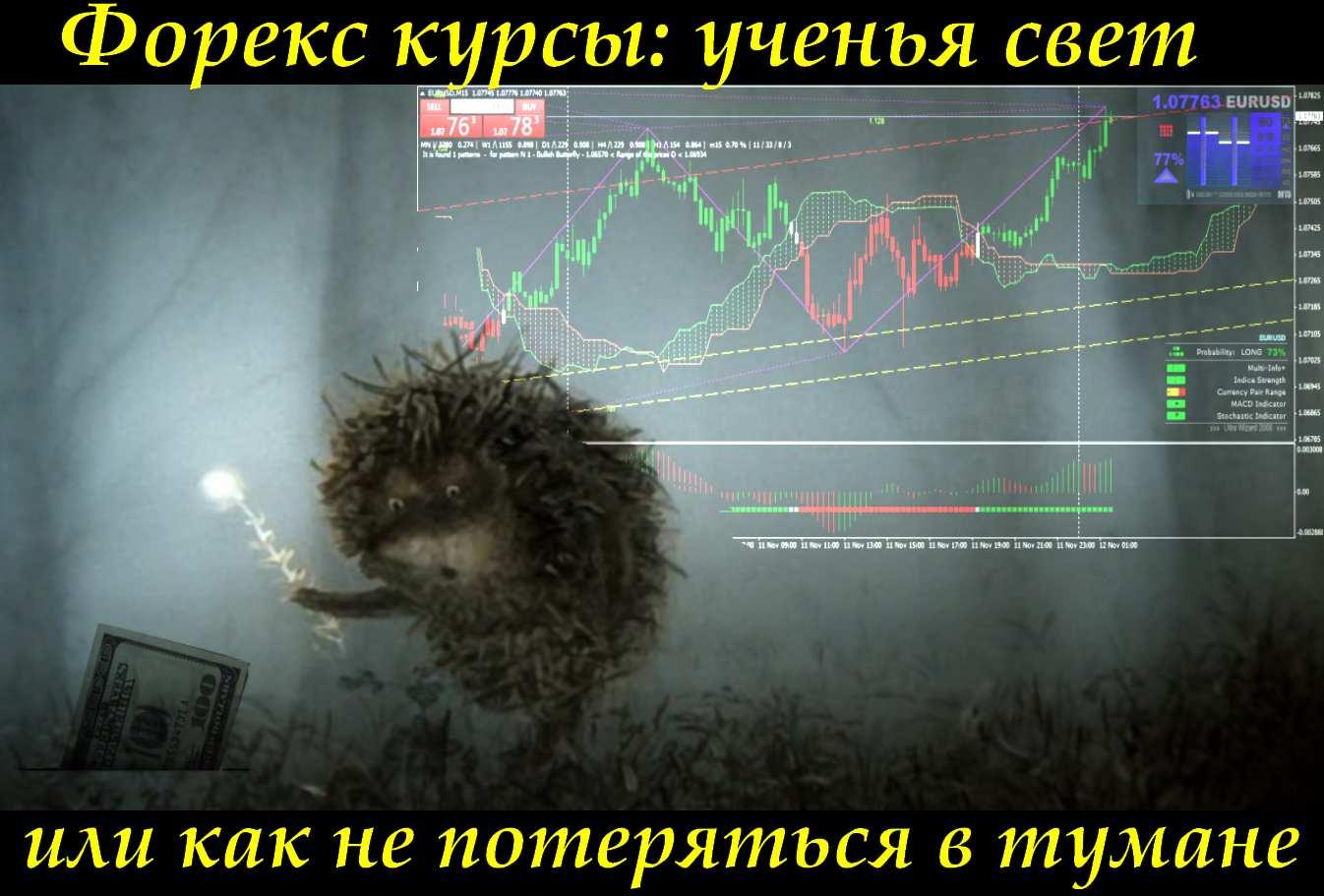 Торговые курсы форекс сейчас курс рубля к доллару на форекс
