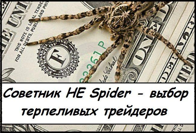 Форекс советник he spider описание главных индикаторов для форекс