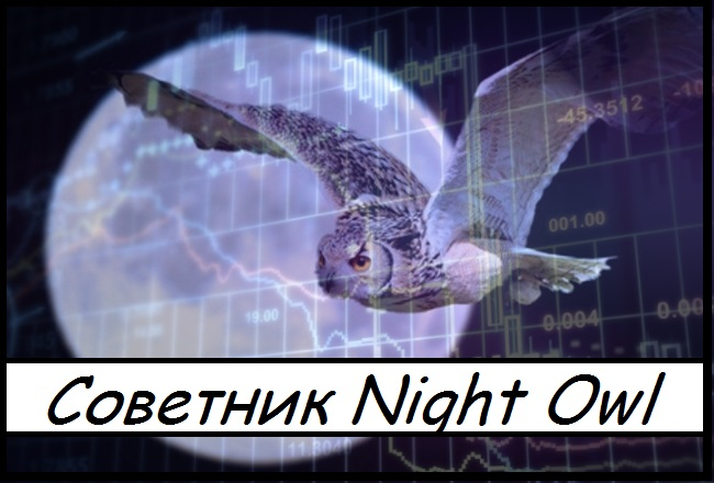 Forex night owl