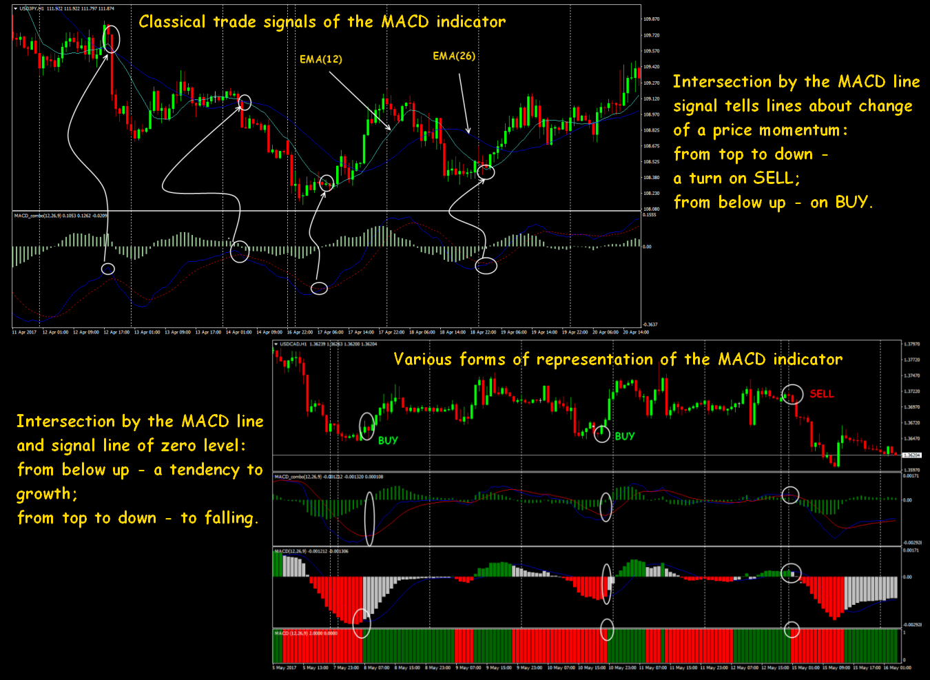 Download macd trading system