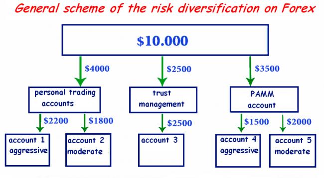 Forex asset management
