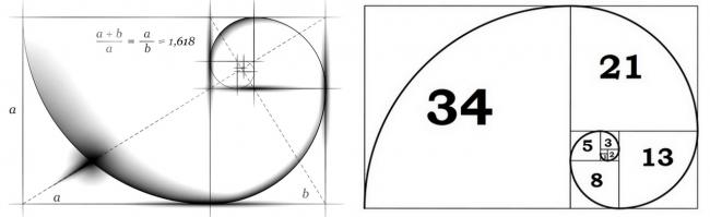Fibo spiral forex
