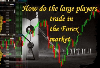 Trade in the market forex team in armenia