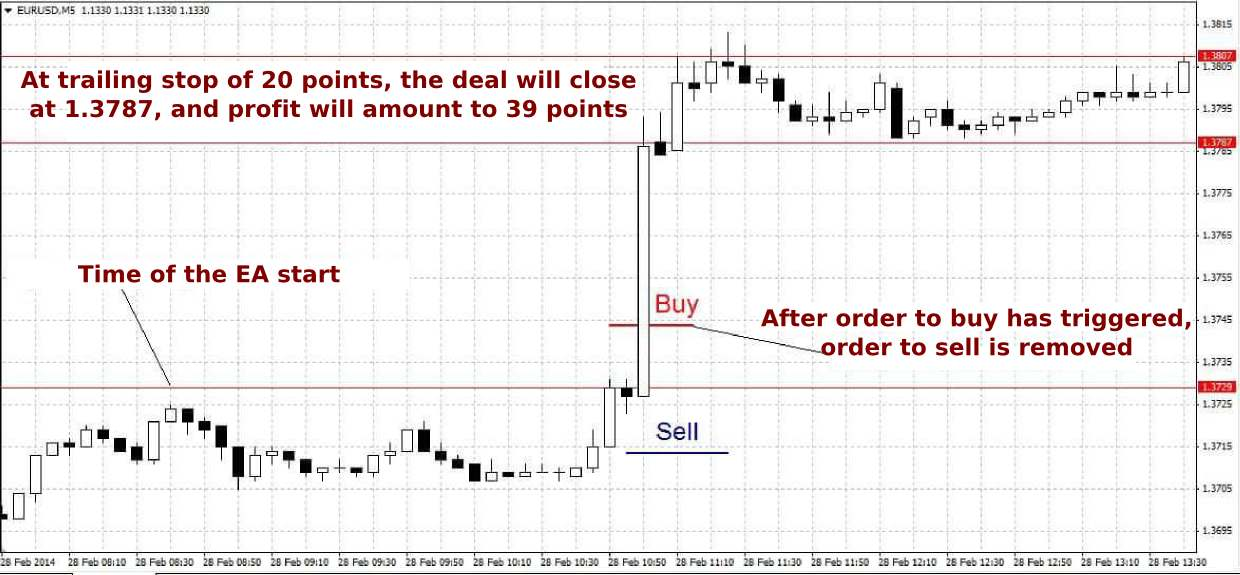 Forex news forecast