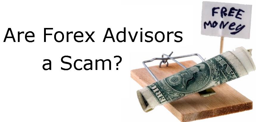 Forex trading advisors
