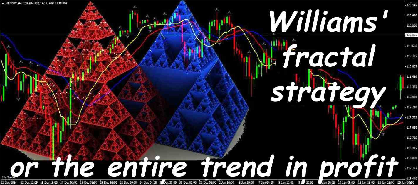 Williams Fractal Strategy Or The Entire Trend In Profit Le Successful Trading